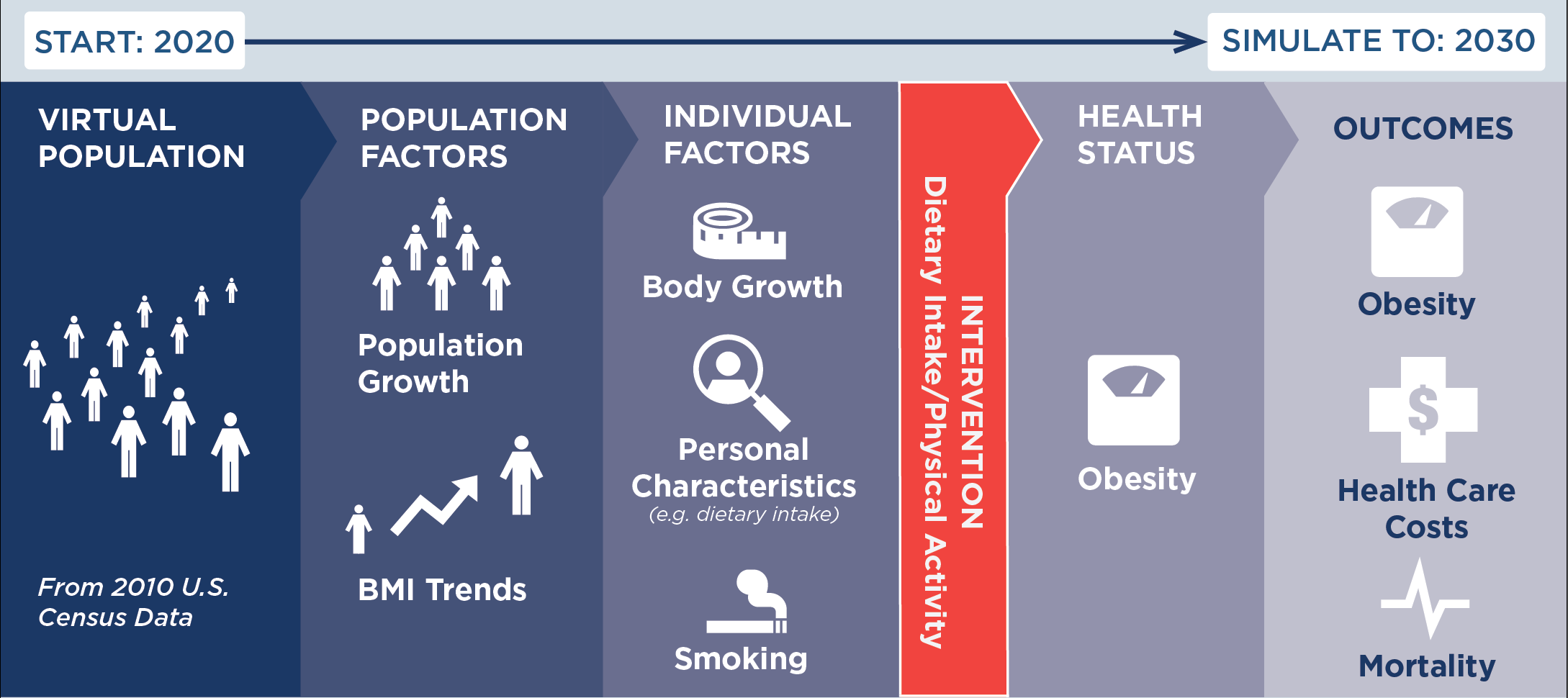CHOICES microsimulation model: start in 2020 and simulate to 2030. Start with a virtual population using data from the 2010 U.S. census. Then take into account population factors, such as population growth and BMI trends. Then take into account individual factors, such as body growth, personal characteristics (e.g. dietary intake), and smoking. Then, input the intervention (dietary intake/physical activity). Then, look at health status (obesity) and outcomes (obesity, health care costs, and mortality).
